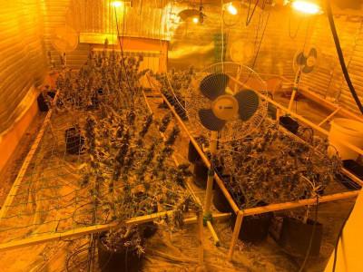 Полицейские Нижнего Новгорода изъяли более 22 граммов наркотиков